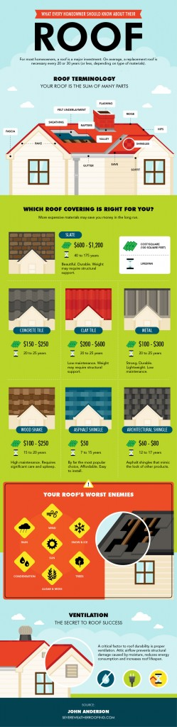 Learn Roof Lingo with This Clever Infographic/home repair home making