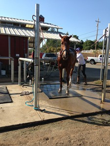 foothill horse property Wash Racks/horse property foothill ca