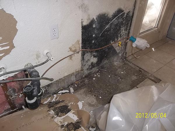 property mold removal Sacramento/