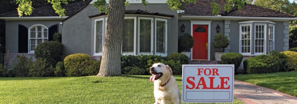 Selling Real Estate/