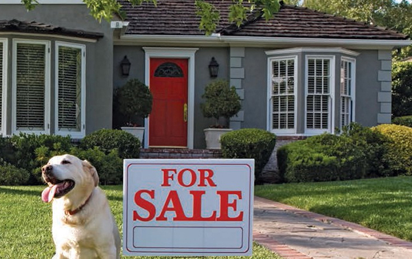 Top ten ways to increase the value of your home/
