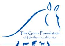 Horse Caring Organizations/